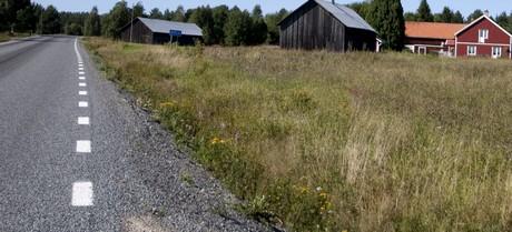 Landsbygdsutvecklingen
